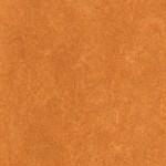 linoleum portocaliu fizalis